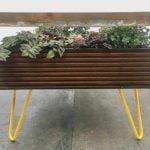 Hackney_Botanical_Terrarium-Coffee_Table_05