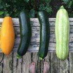 Verschillende groenten op een houten balk